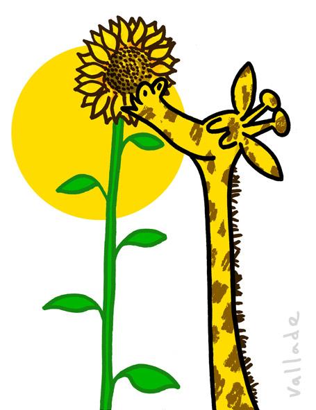 PB_giraffe